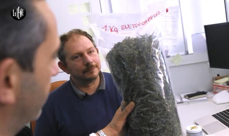 Cannabis Light: a Le Iene svelati tutti i segreti nel servizio di Matteo Viviani, nel corso della trasmissione de Le Iene di mercoledì 21 febbraio 2018
