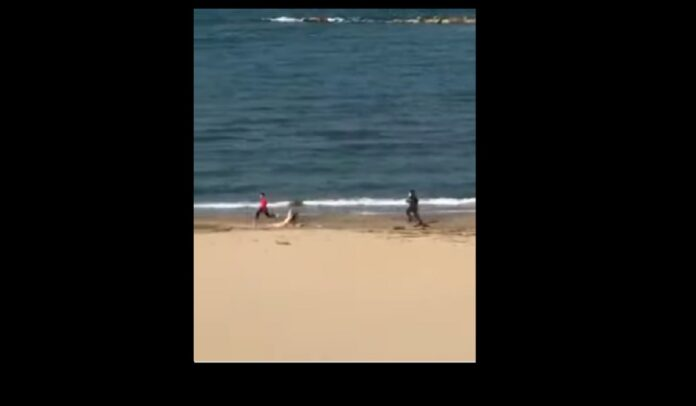 Guardia di finanza insegue runner sulla spiaggia al tempo del coronavirus